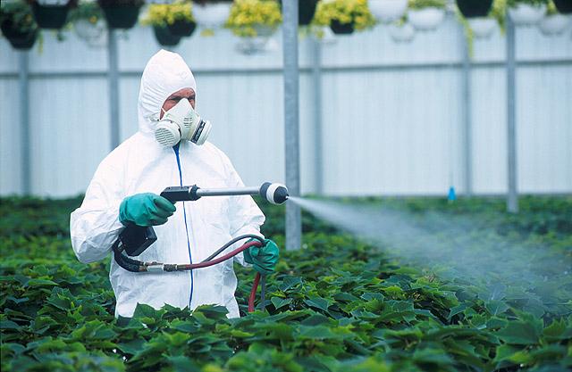 1348202610_pesticidy
