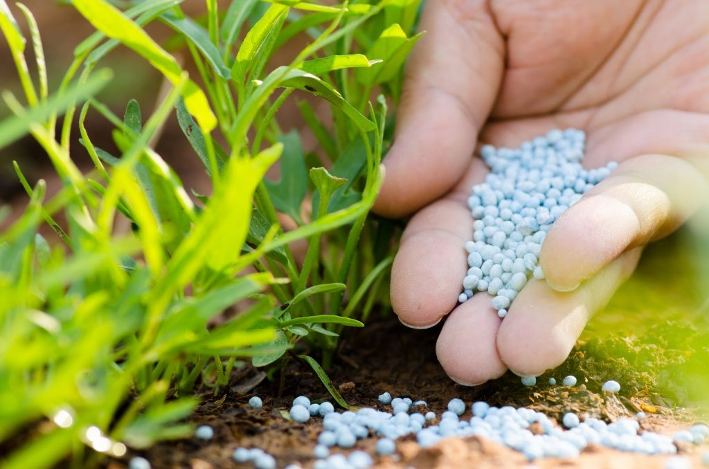 chemical_fertilizer