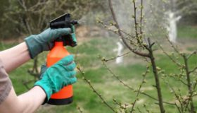 Баковые смеси для защиты растений