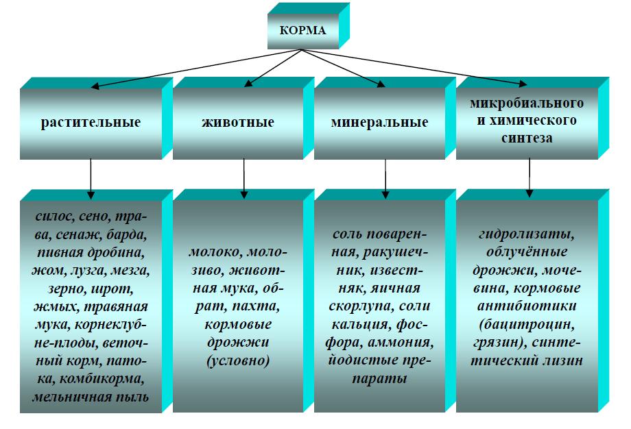 Классификация кормов