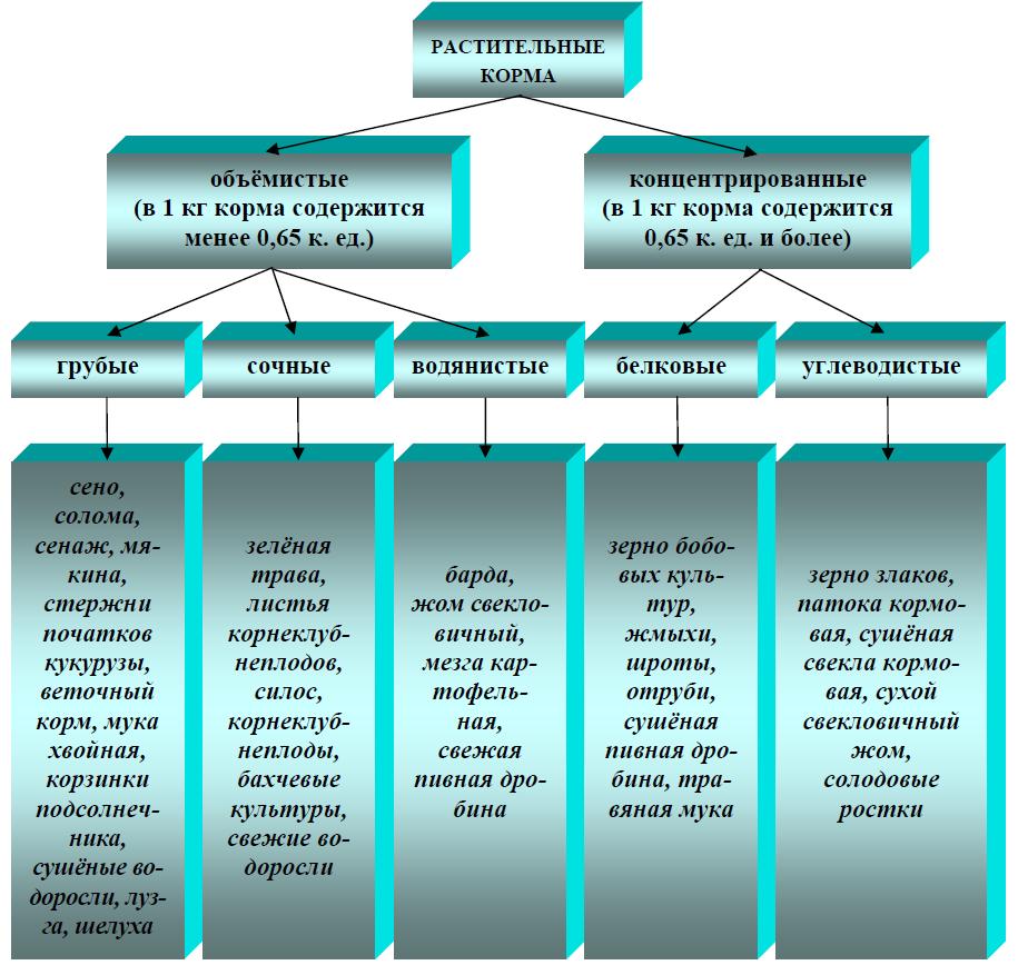 Классификация растительных кормов по питательности