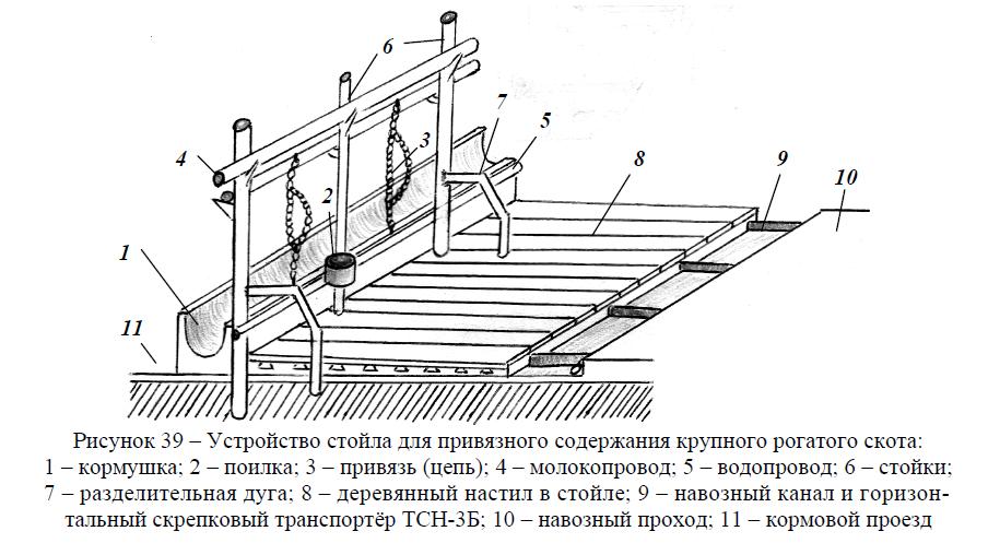 Устройство стойла для привязного содержания крупного рогатого скота