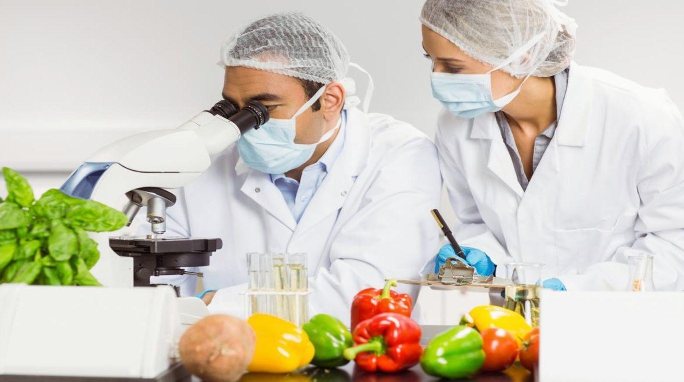 Пищевая биотехнология, ее современное состояние