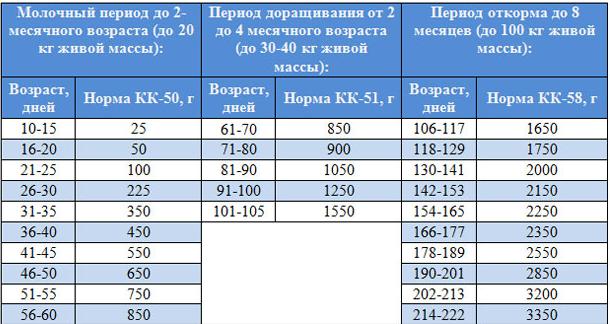 4721272_kartinka-1
