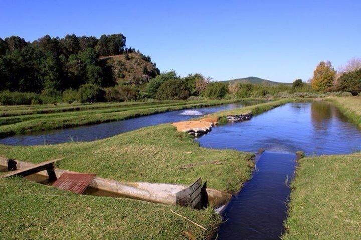 Характеристика гидротехнических сооружений рыбоводных прудов