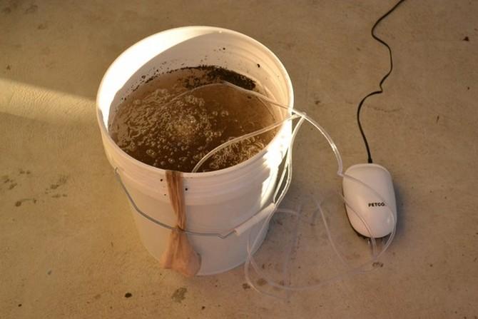 Повышаем зимостойкость аэрированным компостным чаем