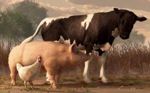 Стресс в животноводстве и способы его профилактики