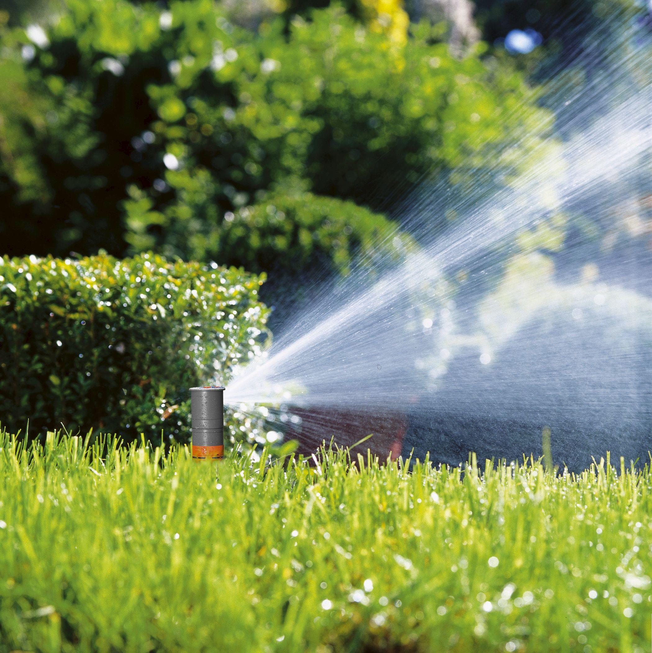 Полив сада - 8 способов экономно поливать сад