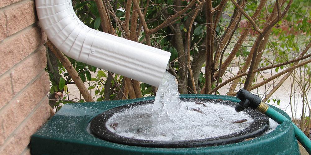 Дождевая вода — как собирать и использовать дождевую воду в огороде?